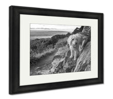 Load image into Gallery viewer, Framed Print, Labradoodle Above The Rio Grande Valley