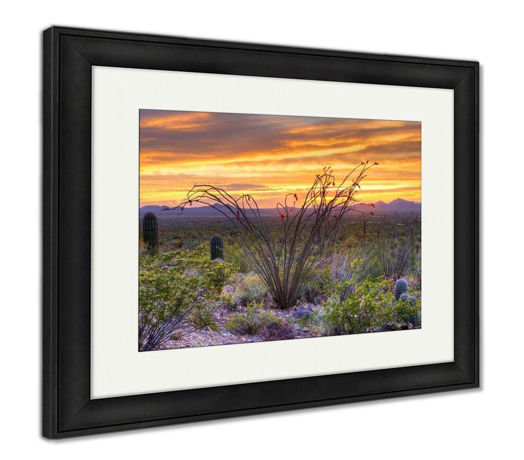 Framed Print, Sonoran Desert Catching Days Last Rays Near Tucson