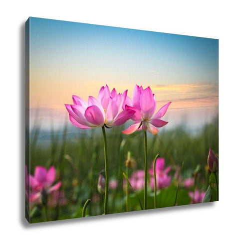Gallery Wrapped Canvas, Lotus Flower In Sunset