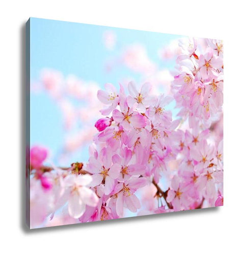 Gallery Wrapped Canvas, Japanese Cherry Blossoms