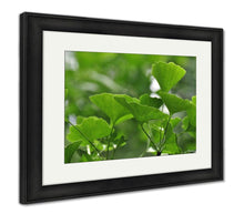 Load image into Gallery viewer, Framed Print, Chapel Hill Ginko Leaves