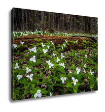 Load image into Gallery viewer, Gallery Wrapped Canvas, Moss Covered Log And Wild White Trillium Fallen Log Surrounded By Wild White