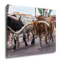 Load image into Gallery viewer, Gallery Wrapped Canvas, Longhorn Cattle Drive At The Stockyards Of Fort Worth Texas