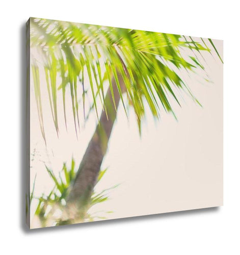 Gallery Wrapped Canvas, Tropical Palm Trees Branches Sun Light