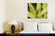 Load image into Gallery viewer, Gallery Wrapped Canvas, A Dragonfly Resting On A Leaf In Minnesota