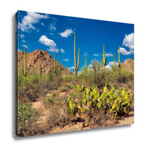 Load image into Gallery viewer, Gallery Wrapped Canvas, Saguaro And The Mountains In The Sonoran Desert Of Arizona