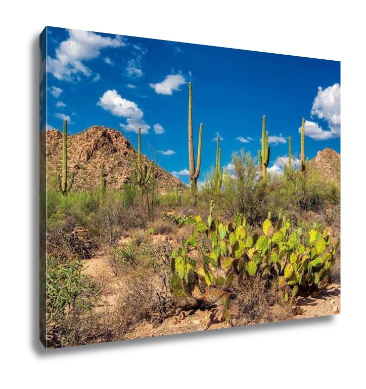 Gallery Wrapped Canvas, Saguaro And The Mountains In The Sonoran Desert Of Arizona