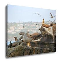 Load image into Gallery viewer, Gallery Wrapped Canvas, Seals Sea Lions Seaguls Pelicans And Other Residents Of La Jolla California