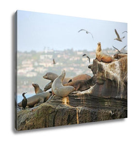 Gallery Wrapped Canvas, Seals Sea Lions Seaguls Pelicans And Other Residents Of La Jolla California
