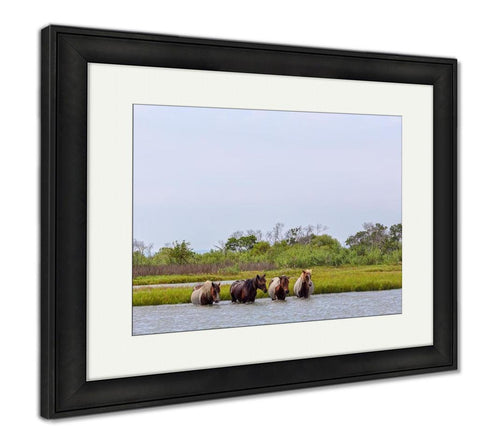 Framed Print, Four Wild Ponies Of Assateague Island Maryland USA Crossing The Water Of The