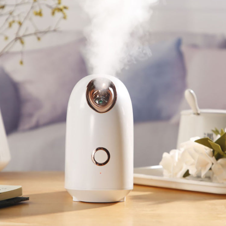 The Premium Facial Humidifier