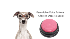 In 2021, Dogs Can Talk - The Dog Communication Board With Voice Buttons