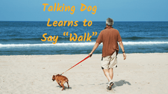Talking dog uses soundboard to say one of their first words: walk!