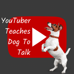YouTuber Jada Jackson Teaches Dog Lina to Use Dog Buttons to Talk
