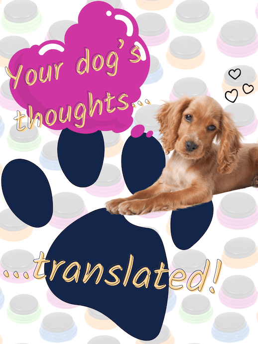 Your dog's thoughts, translated. Recordable buttons for dogs are the closest thing yet to a dog translator device.