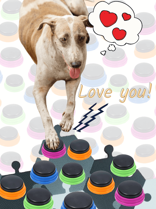 Dog says love you with buttons