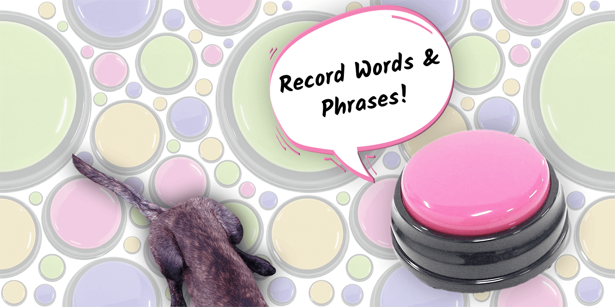 "Record words and phrases with woof meow hello speech buttons for dogs! Image of pink dog button with callout: ""record words and phrases!"""