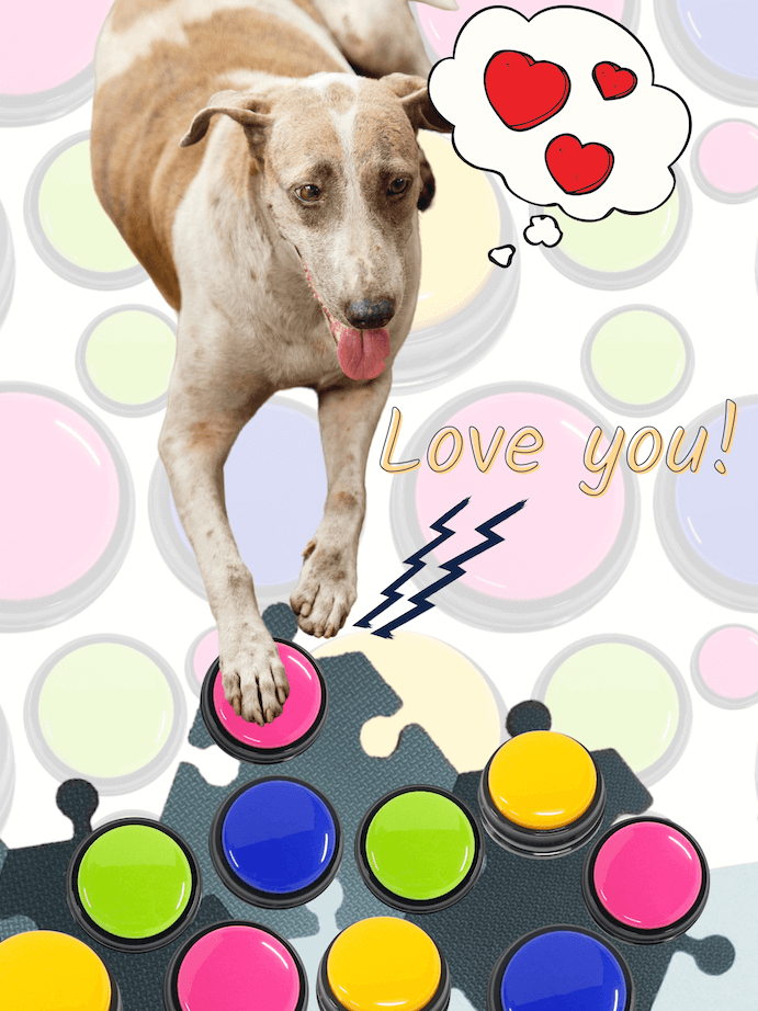 Dog says love you with recordable button for dogs.