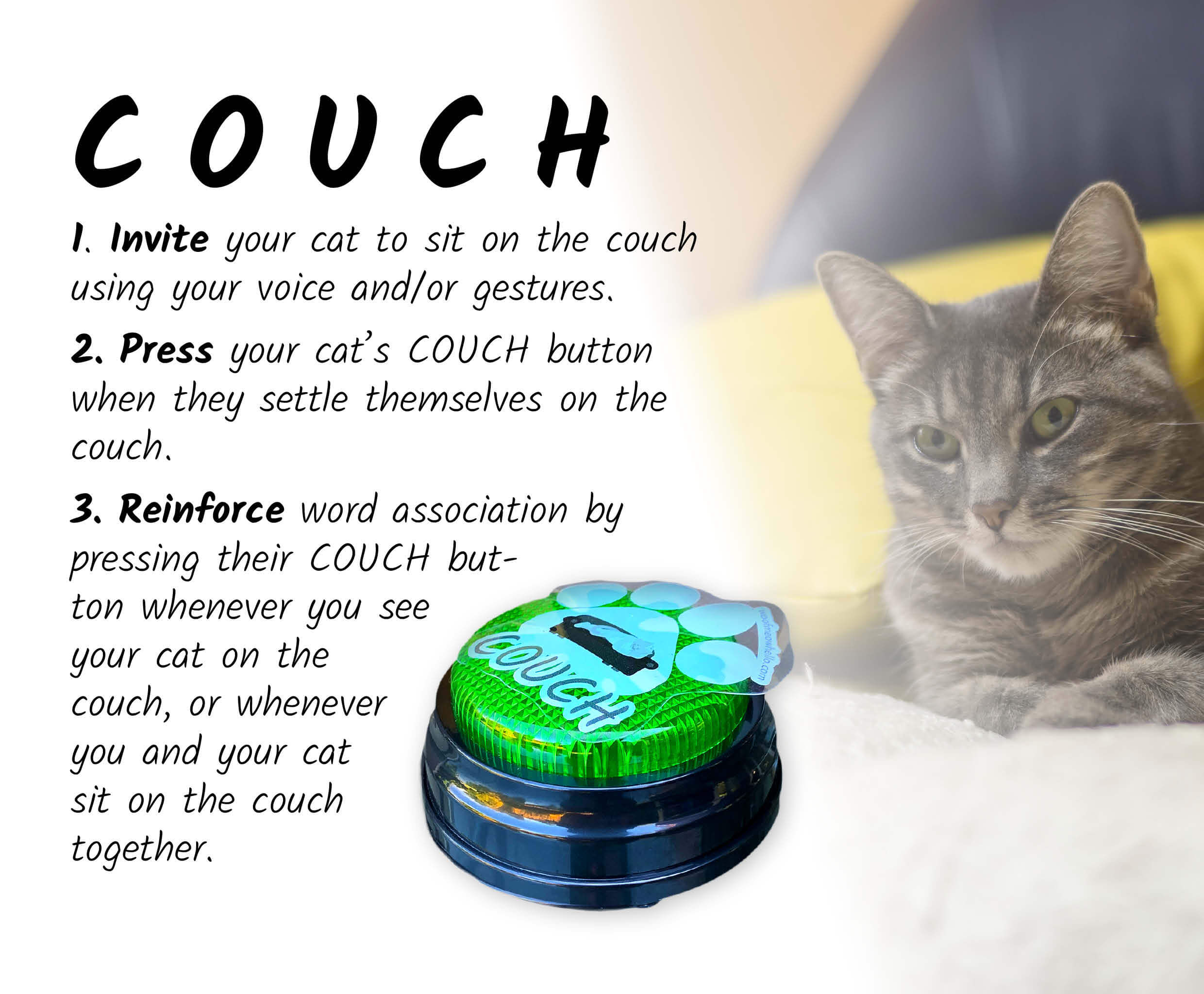 To train your cat to say COUCH, start by inviting them to sit on the couch using your voice or gestures. Press your cat's COUCH button once they've settled themselves on the couch. Reinforce word association by pressing their COUCH button whenever you see your cat on the couch, or whenever you and your cat sit on the couch together. To the right of these instructions is a green speech button for cats with the COUCH sticker label. To the right of the button is a cat lounging on a blue couch with yellow pillows.