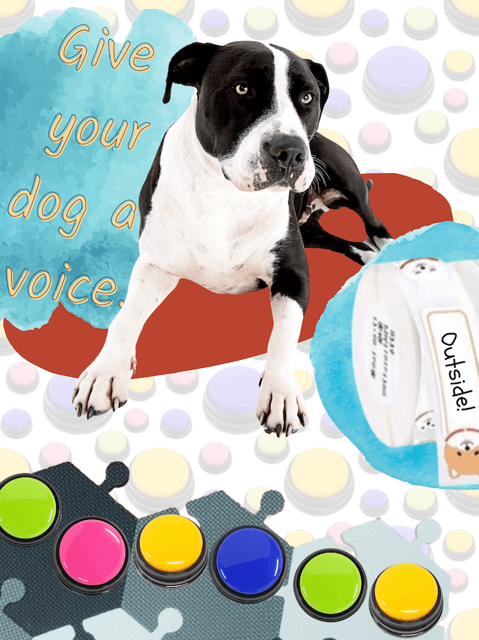 Give your dog a voice. Recordable buttons with hex tiles and label maker.