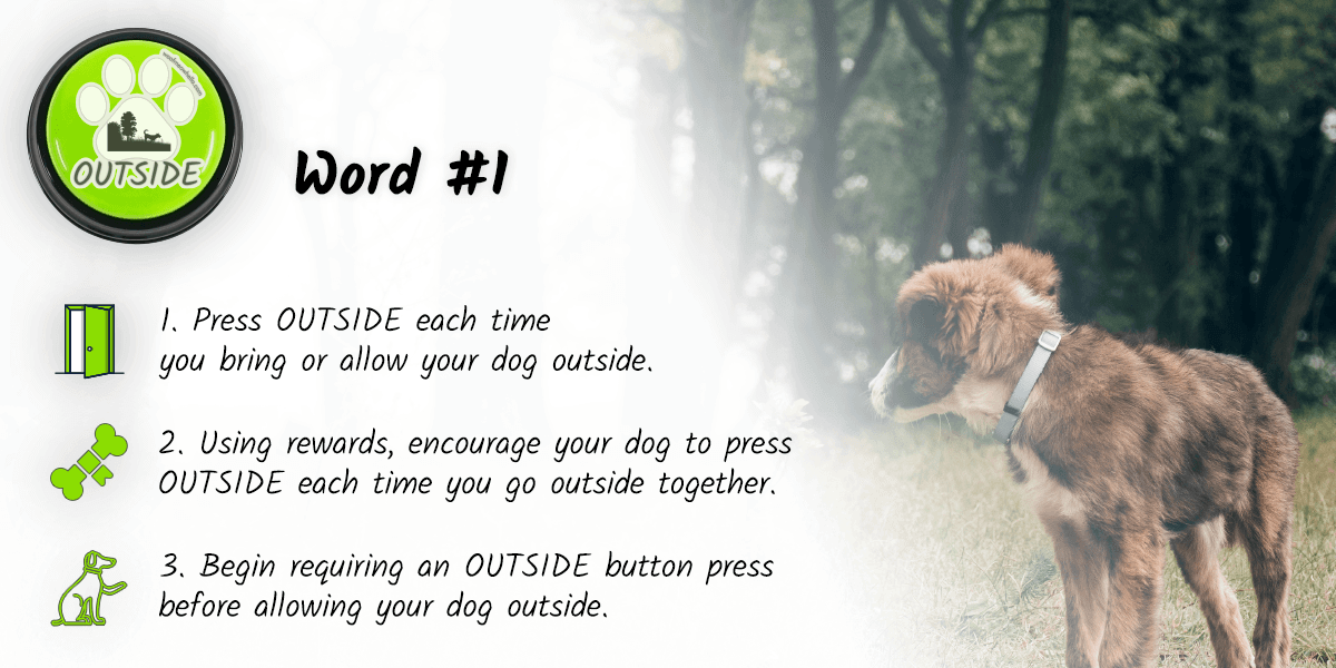 The first word to teach you dog to talk is outside. To start, each time you bring or allow your dog outside, press the button. Using rewards, encourage your dog to press OUTSIDE each time you go outside together. Next, begin requiring an OUTSIDE button press before allowing your dog out.