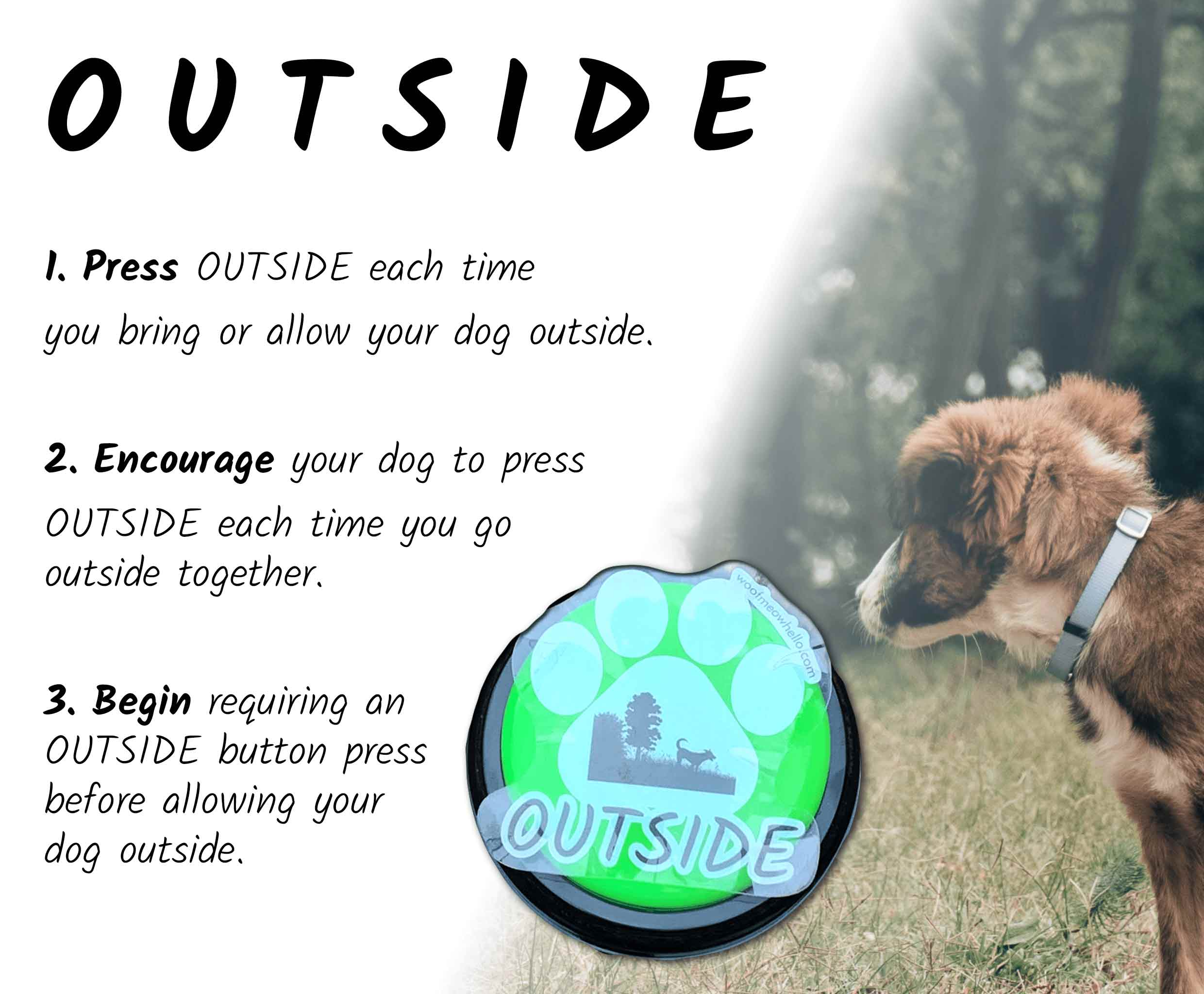 Press OUTSIDE each time you bring or allow your dog outside. Encourage your dog to press their OUTSIDE word button each time you go outside together. Begin requiring an OUTSIDE talking button press before allowing your dog outside.