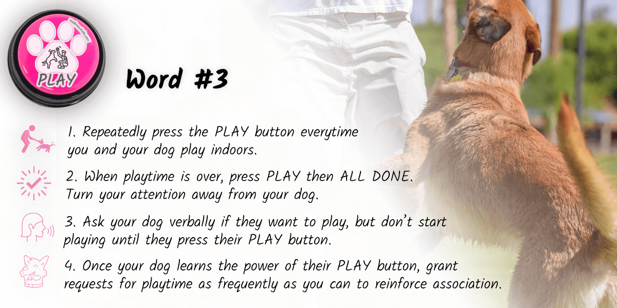 The third on the list of first words to teach your dog is PLAY. To start, repeatedly press the PLAY button every time you and your dog play indoors. When playtime is over, press PLAY then ALL DONE. Turn your attention away from your dog. Start asking your dog verbally if they want to play, but don't start playing until they press their play button. Once your dog learns the power of their play button, grant requests for playtime as frequently as you can to reinforce association.