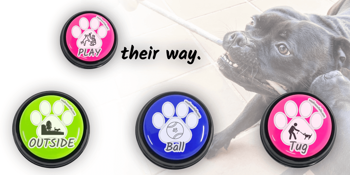 Play their way: Assign voice buttons to words like ball or tug to let your dog choose between ways to play. You can even combine with outside to allow your dog to ask to play outside!