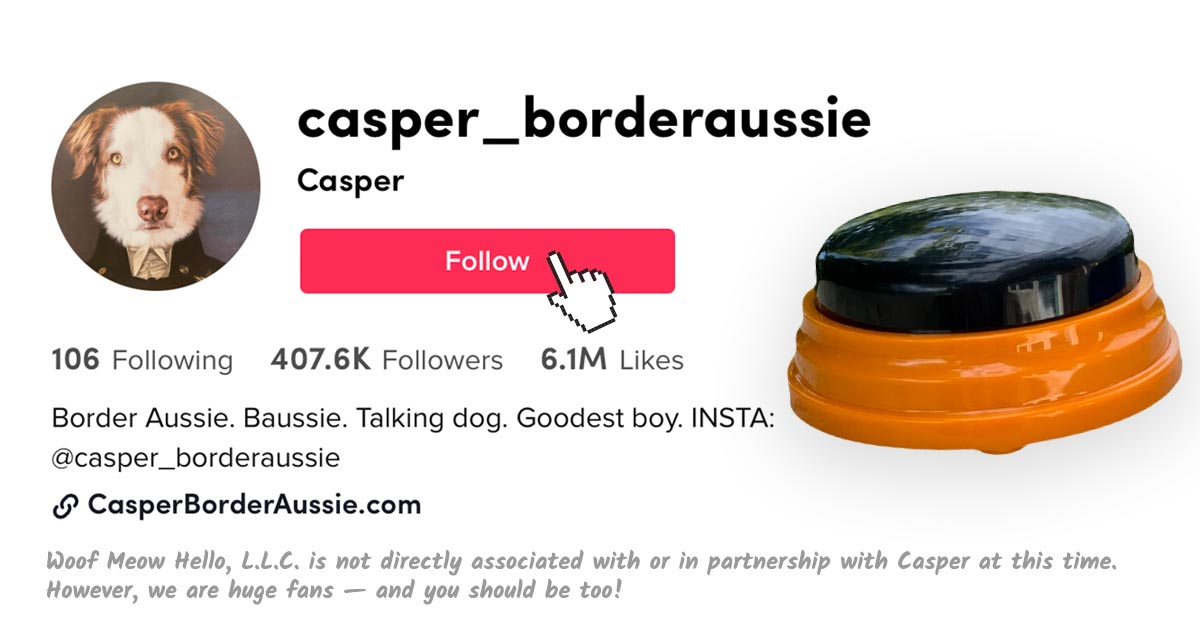 Follow Casper the Talking Border Aussie on Tik Tok! Woof Meow Hello, L.L.C. is not directly associated with or in partnership with Casper at this time. However, we are huge fans — and you should be too!