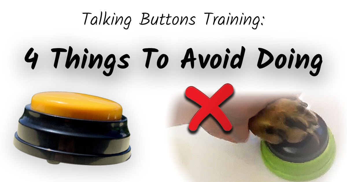 Talking buttons are a great way to build a stronger bond with your pet, but make sure you avoid these common training mistakes.
