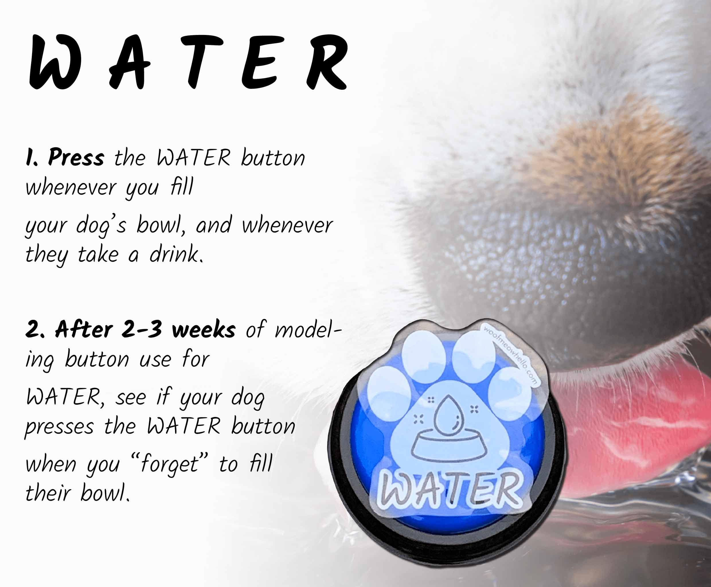 """Press the water button whenever you fill your dog's bowl, and whenever they take a drink. After 2-3 weeks of modeling button use for water, see if your dog presses the WATER button when you """"forget"""" to fill their bowl."""