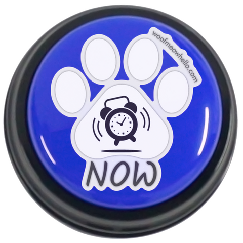 Now - Sticker Label For Pet Communication Buttons