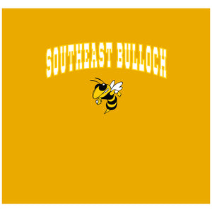 Southeast Bulloch Yellowjackets Wordmark