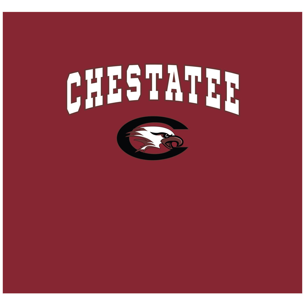 Chestatee War Eagles Wordmark