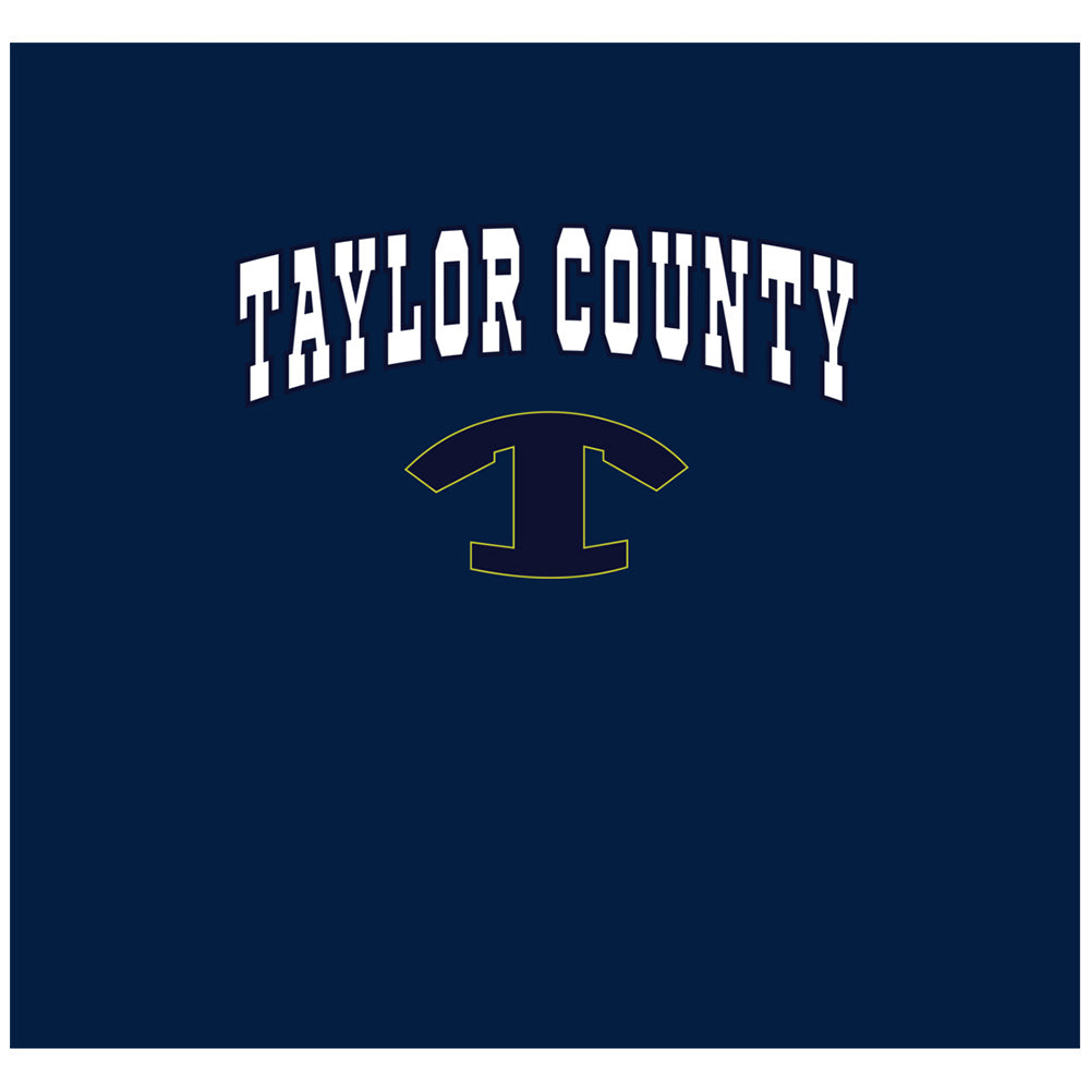 Taylor Vikings Wordmark