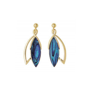 Paua Shell Earrings - PE288