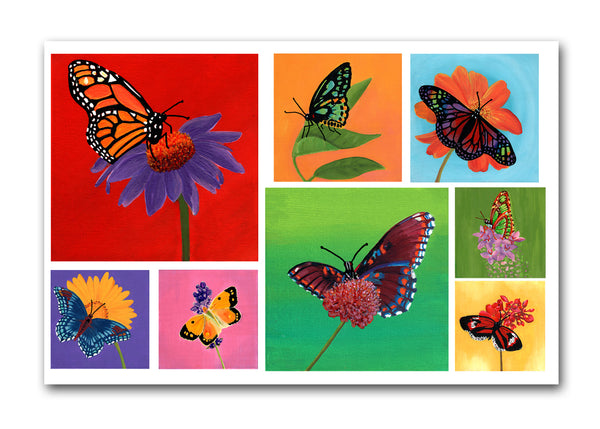 Butterfly note cards (10 pk)