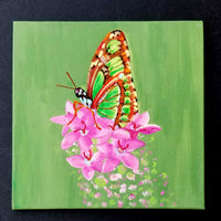 "6"" Butterfly on Green - Original Painting"