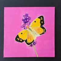 "6"" Butterfly on Pink - Original Painting"