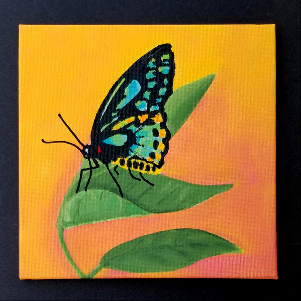 "6"" Butterfly on Orange - Original Painting"