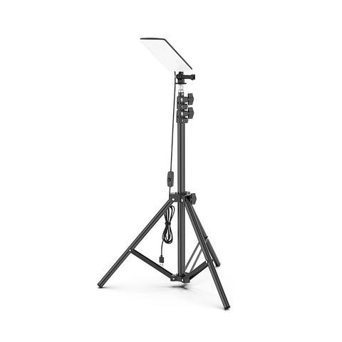 Tripod Outdoor Light