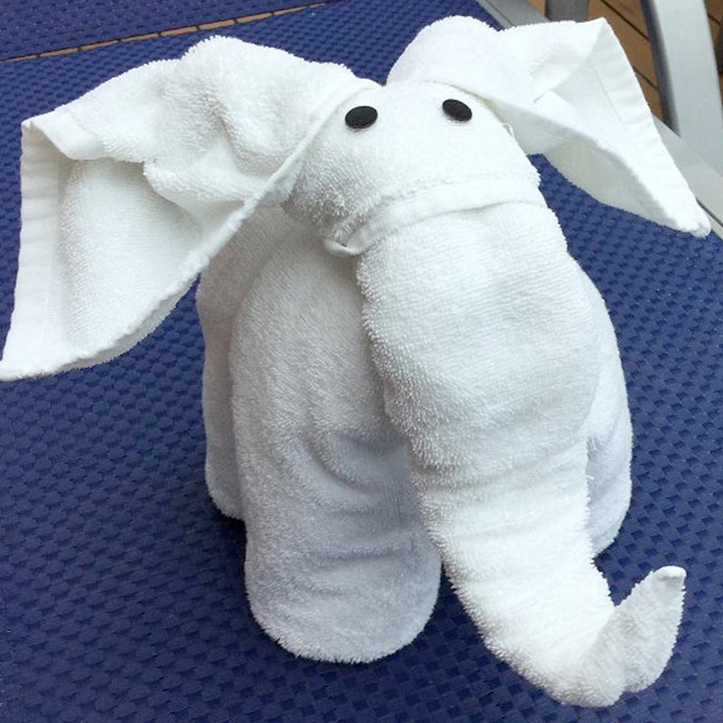 Yes, it's true! Towel Origami lessons!