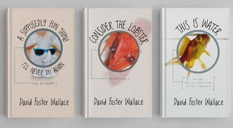 David Foster Wallace Collection (15 books)