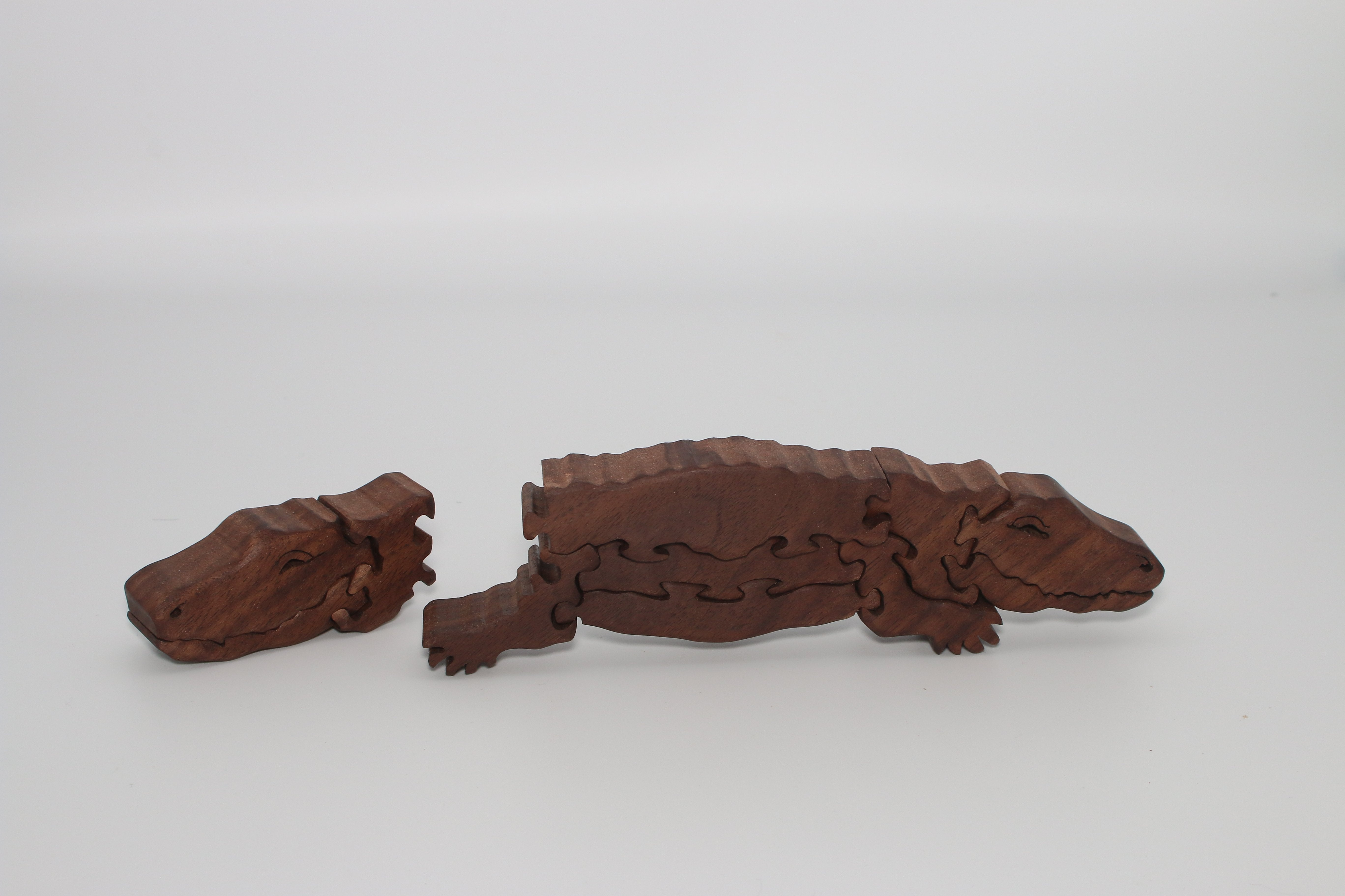 Two-headed Alligator