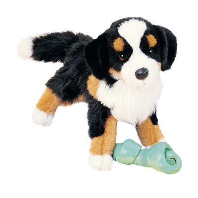 Bernese Mountain Dog Companion