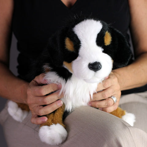 Bernese Mountain Dog Gifts for Alzheimers