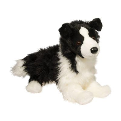 Border Collie Dog Companion