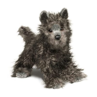 Cairn Terrier Dog Companion
