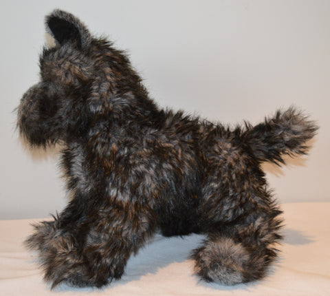 Cairn Terrier Dog for People with Alzheimer's and Caregivers
