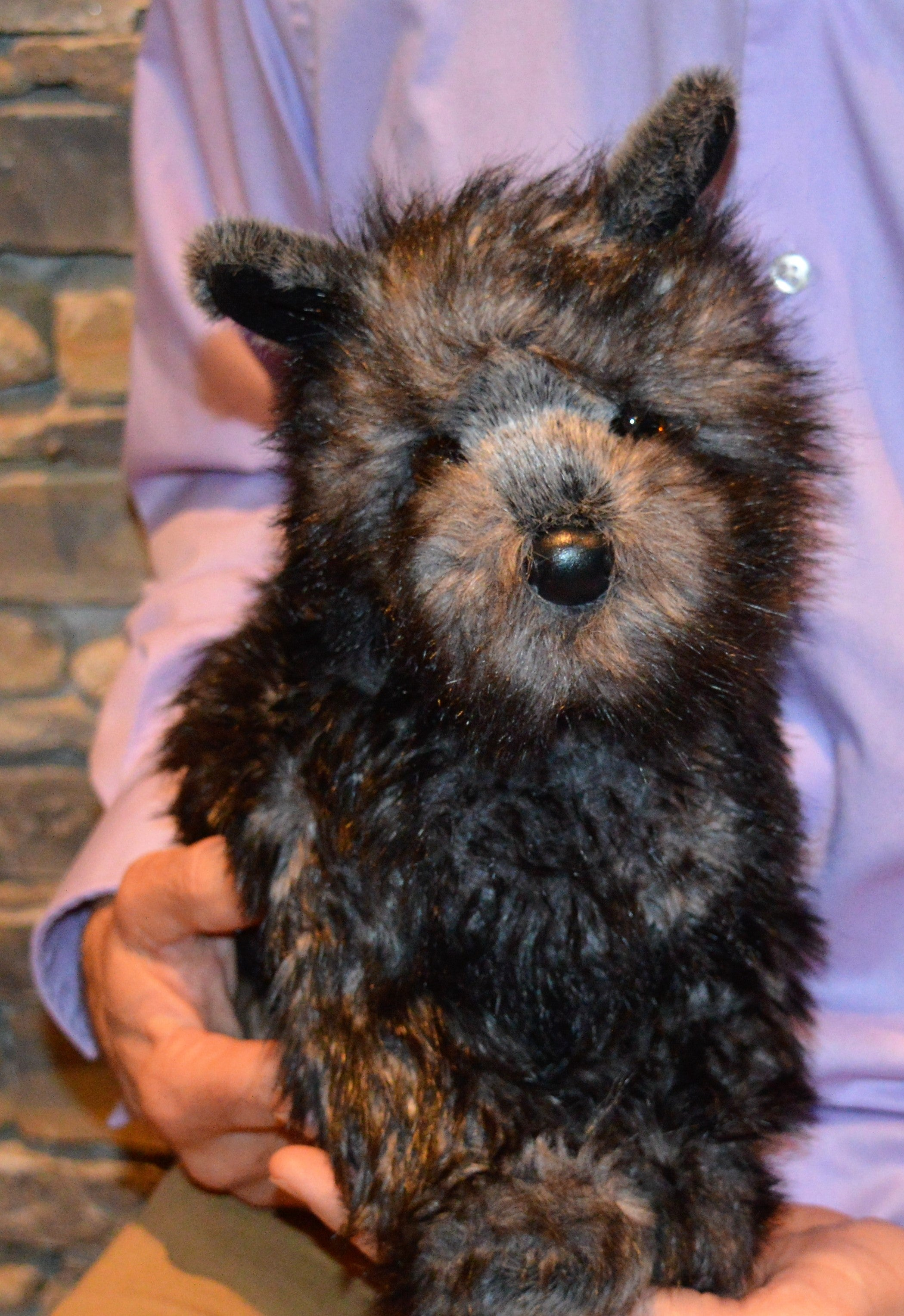 Cairn Terrier Dog Stuffed Toy For Seniors And People With Alzheimer S Memorable Pets